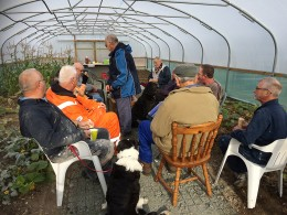 Thursday lunch polytunnel